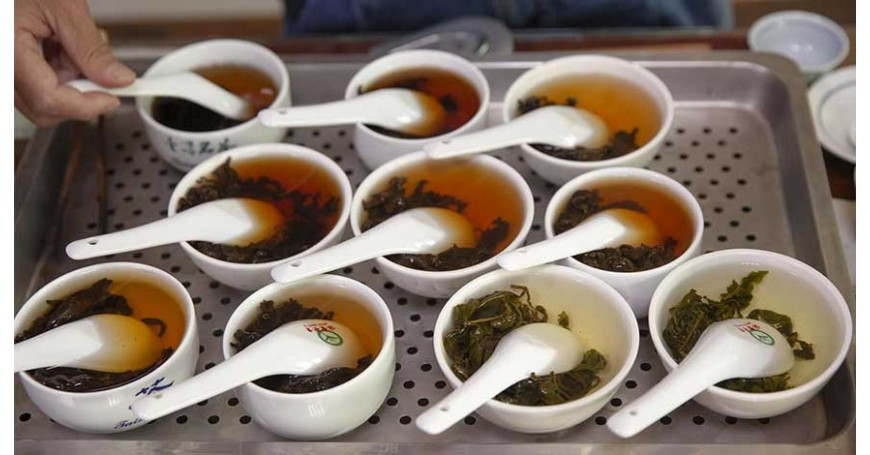 Tè Gaba e gli effetti positivi su insonnia, stress e pressione arteriosa