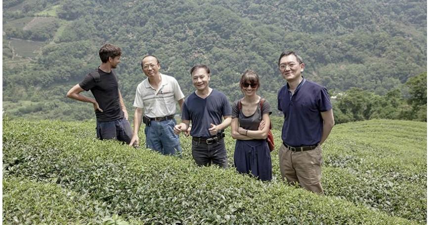 Viaggio alla scoperta dei luoghi del tè: Taiwan