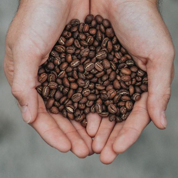 Caffè Monorigine Brasile Capricornio