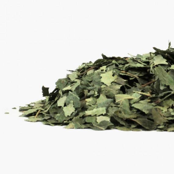 Betulla BIO, foglie per tisana