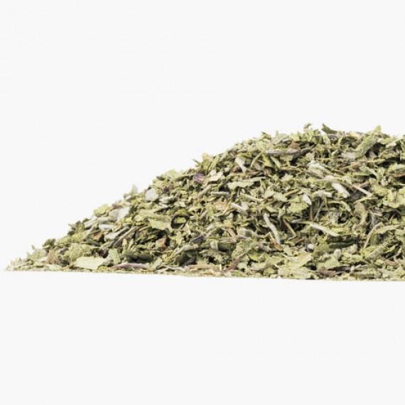 Salvia Bio