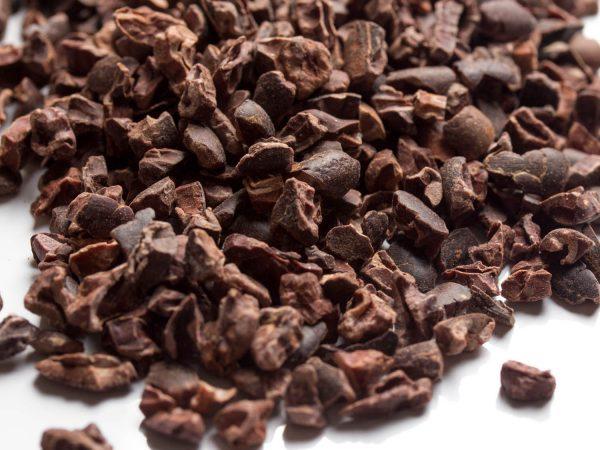 nibs di cacao