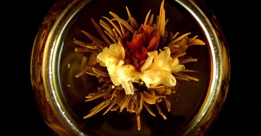 blooming tea sbocciato